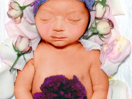 Alana's Birth Story