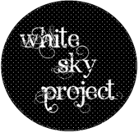 """On Bad Reviews""- A Guest Post @ White Sky Project"