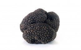 Fresh Black Summer Truffles, OUT OF STOCK