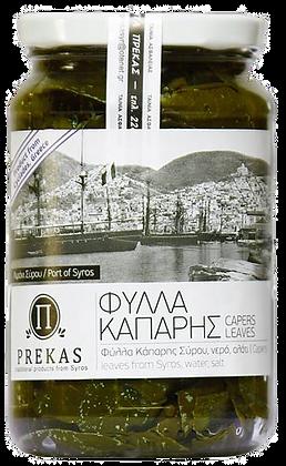ΦΥΛΛΑ ΚΑΠΑΡΗΣ - CAPER LEAVES