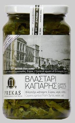 ΒΛΑΣΤΑΡΙ ΚΑΠΑΡΗΣ - CAPER SPROUTS