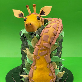 Cakes (37).JPEG
