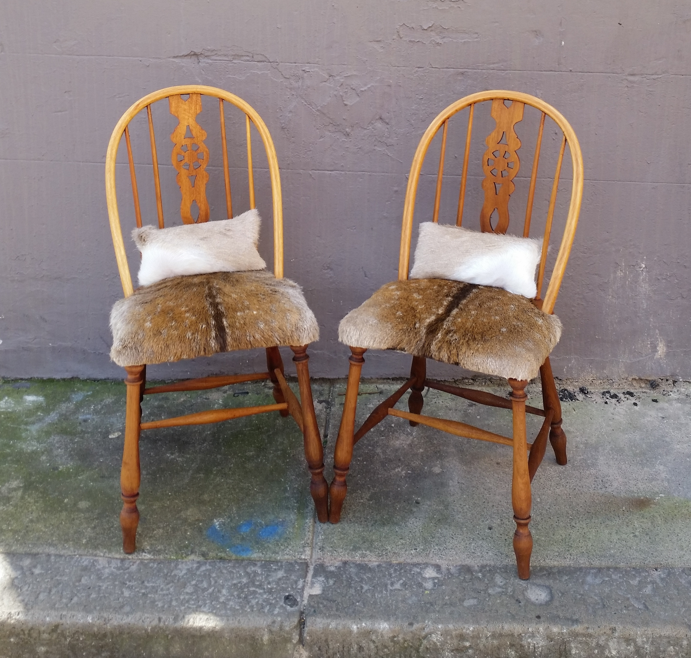 Vintage Chairs Restored Using Deer Hide | Barrenjoey Collective | Avalon NSW