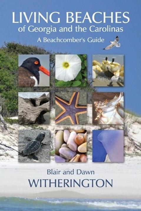 Living Beaches of Georgia & the Carolinas