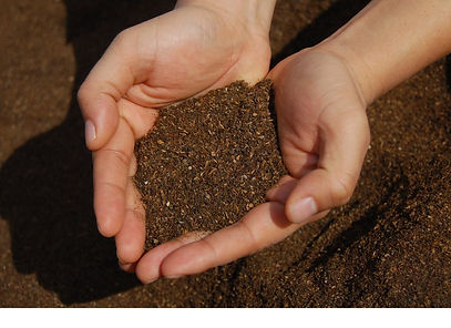 Fertilizer2_1200x1200.jpg
