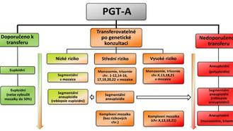 Nový systém kategorizace embryí po preimplantačním genetickém testování aneuploidií (PGT-A)