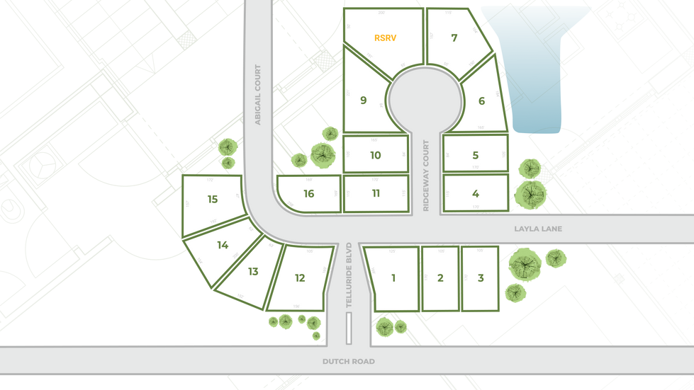 Telluride UPDATED Plat Map-01.png