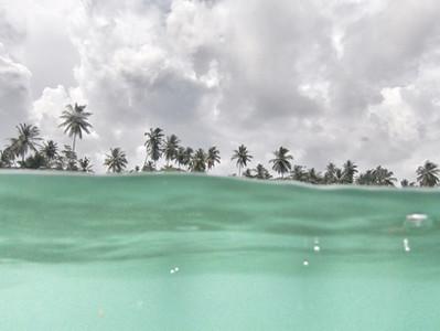 Solo Sri Lanka Surf Trip