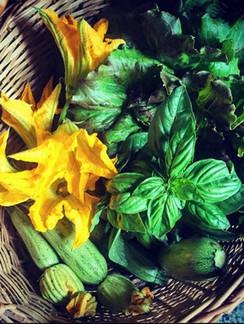 verdure orto.jpg