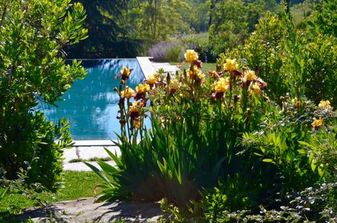 ok piscina con iris DSC_1384.jpg