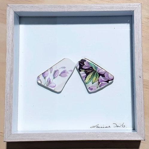 Entomology Series - Vintage Plate Violet's Wings
