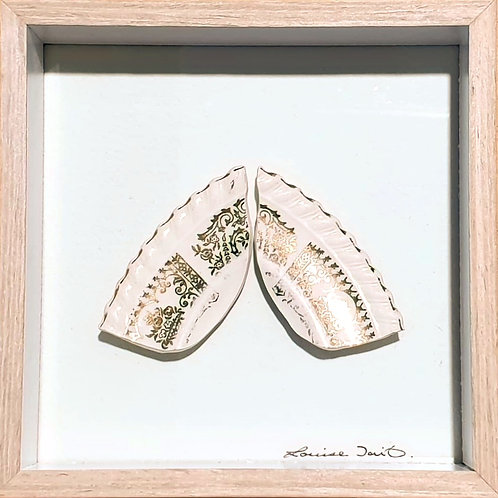 Entomology Series - Vintage Plate Miriam's Wing