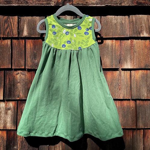 Blueberry dress size 3