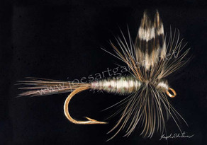 New Adams Fishing Fly