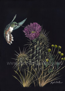 Hummingbird and Hedgehog