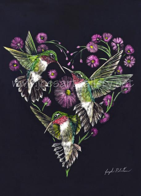 Hummingbird Heart #2