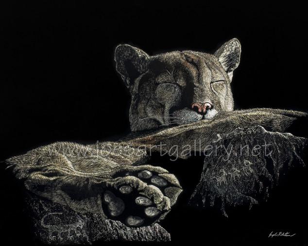 Hunter's Rest #2