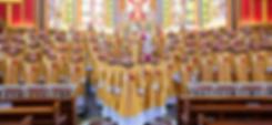 Membri della società di Vita Apostolica Virgo Flos Carmeli