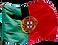 bandeira nacional.png