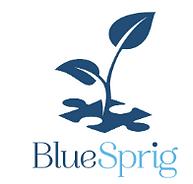 BlueSprig.PNG