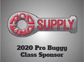 Pro Buggy-100.jpg