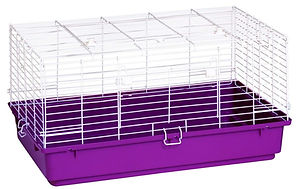 cages1.jpg