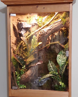 Wooden Wall Hanging Enclosure