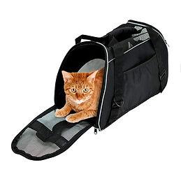 catbed4.jpg