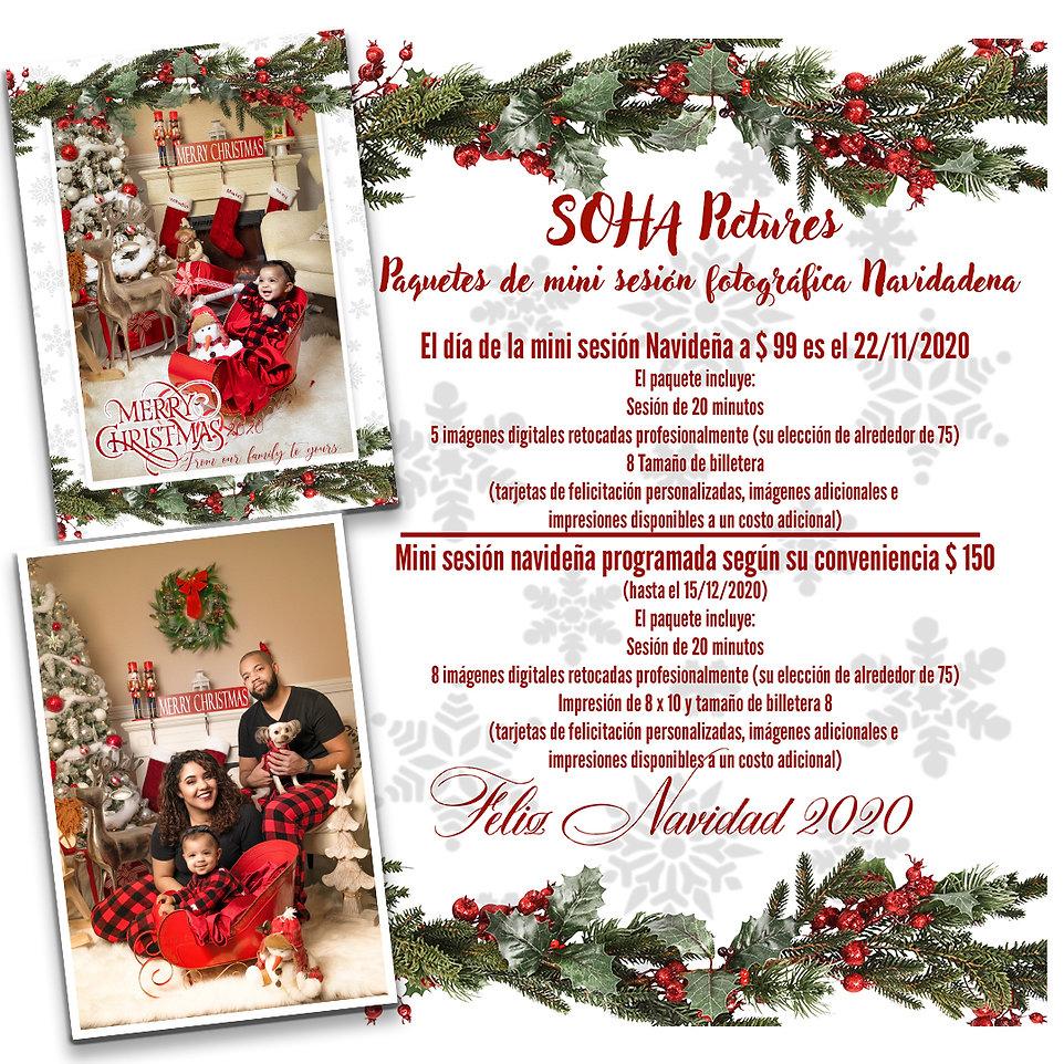 Christmas Promo Spanish.jpg