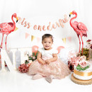 Girl One Year Old Birthday Photo session