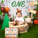 One year old boy birthday photo session