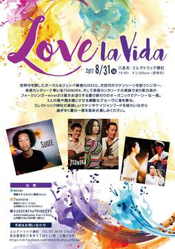 Love La Vida Flyer