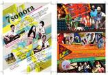 7sonora Flyer