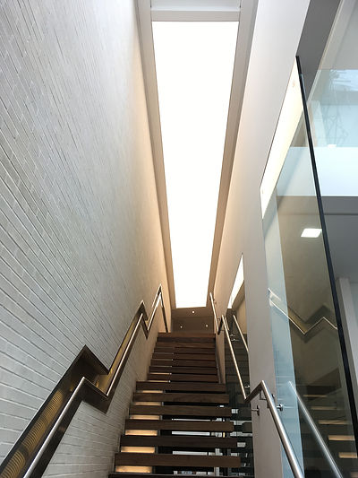 Evolution_stairs.jpg