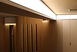 LED Light Beam