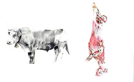 vaca_LR.jpg
