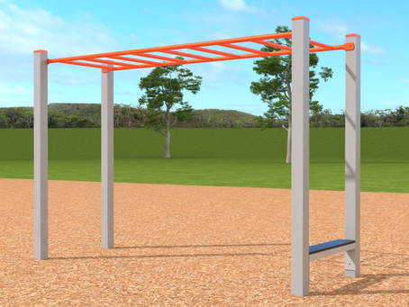 LESSONS FROM THE MONKEY BARS I
