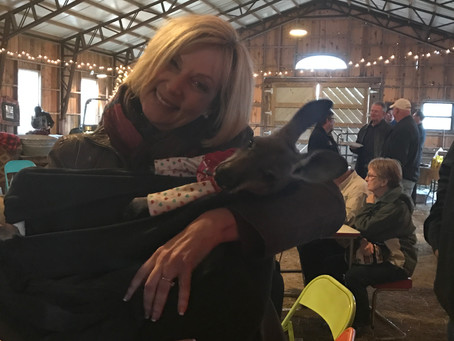 An extraordinary day with Rosie, the kangaroo!!!  (yes, she's real)