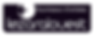 Logo_Lezard copie.png