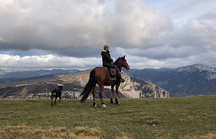 Balade_et_randonnée_à_cheval_(159).jpg