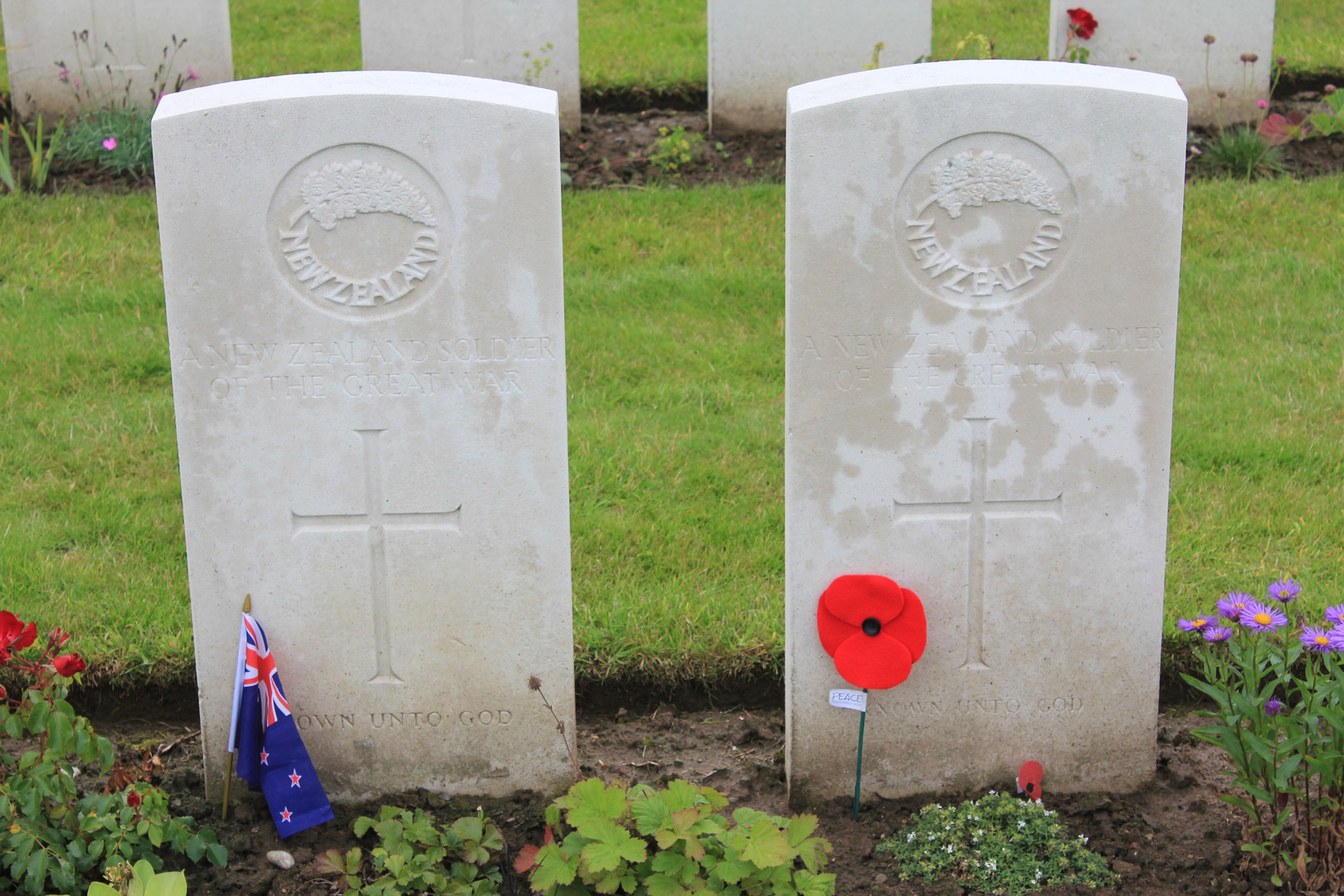 grave at Tyne Cot with poppy2013.jpg