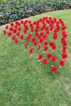 Peace poppies, Manurewa heart.jpg
