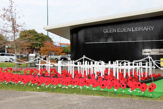 Display at Glen Eden Library.JPG