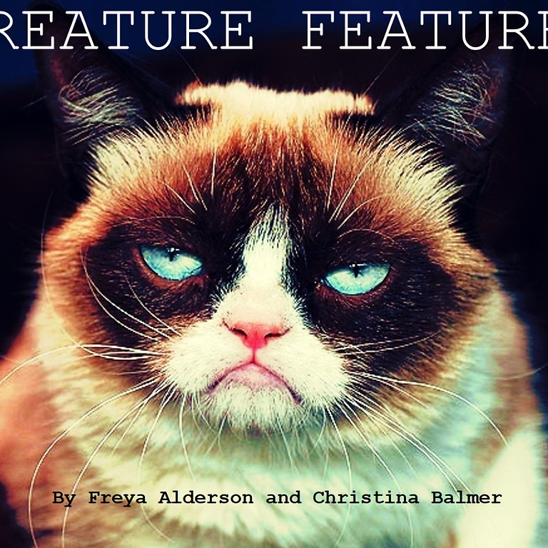 Creature Features, a radio play