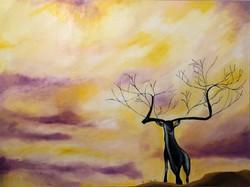 Sunday Deer Dreaming