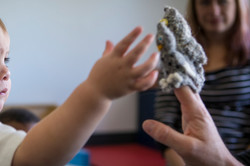 baby hand reaching to owl puppet