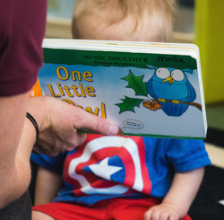 one little owl book