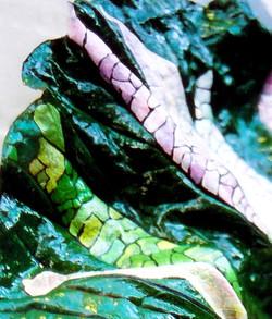 Fotografia | Mara MontanarC'è un Serpente! / There's a Snake!