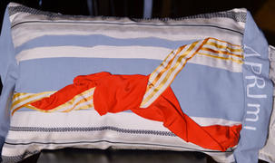 Tails of War Bonnets cushion