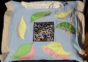 Uccello Campanaro/Bellbird cushion